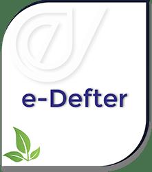 E-Defter Hizmeti - Dev Dönüşüm
