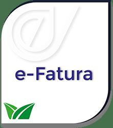 E-Fatura Hizmeti - Dev Dönüşüm